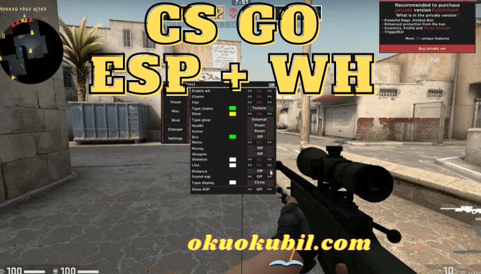 CS GO Duvar Hack