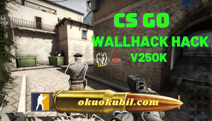 CS GO v25ok Wallhack